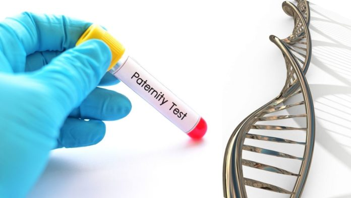 DNA Paternity test main